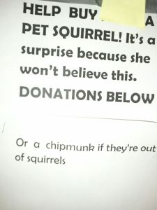 squirrel fundraiser