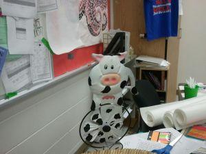 cow pinwheel